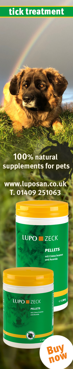 100% Natural Supplements for Pets