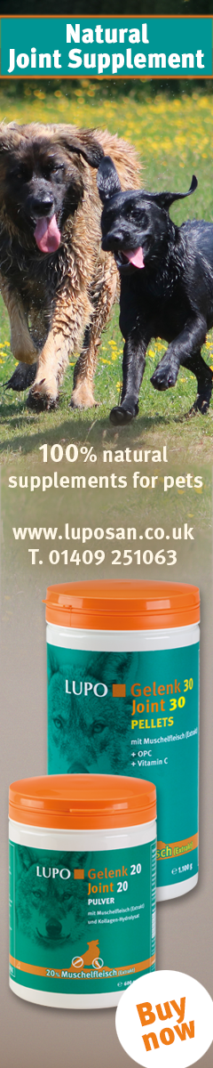 100% Natural Joint Supplements for Pets